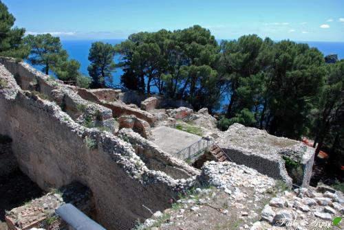 Capri_T12.jpg