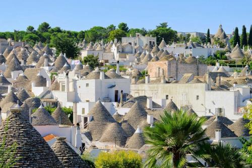 destination_around_bari_alberobello_1.jpg