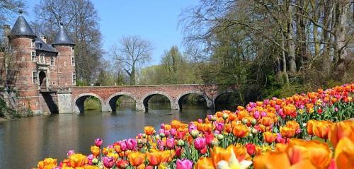floralia-brussels1.jpg