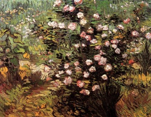Розовый куст в цвету, 1889.jpg