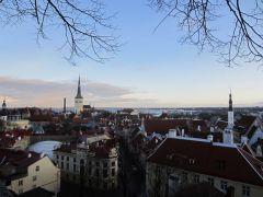 Воспарили над крышами Таллина