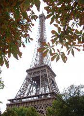 Парижская скромница